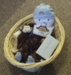 blue and brown diaper baby boy in a basket