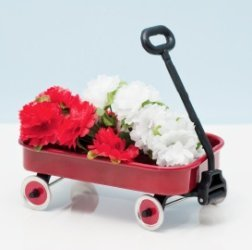 red flyer wagon baby shower