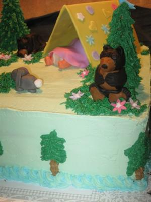 camping baby shower cake