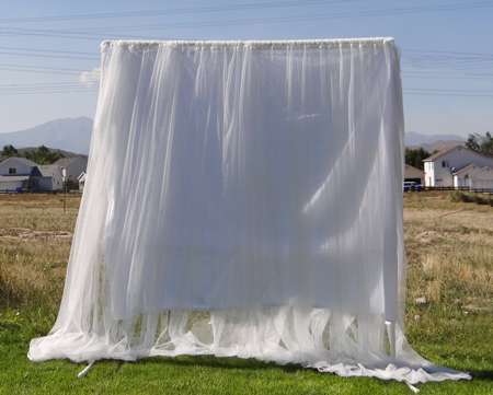 sheer curtains with white sheet on backdrop