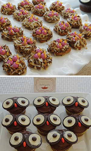 birds nest pretzels and owl cupcakes