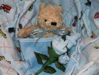 teddy bear in basket carriage
